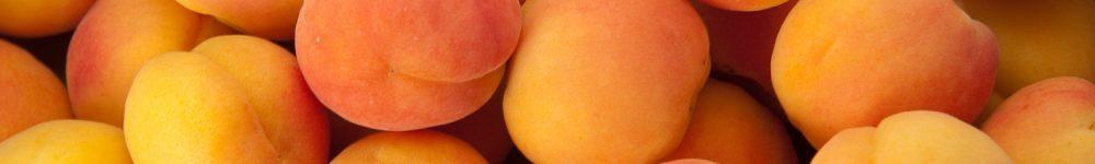 apricot-8